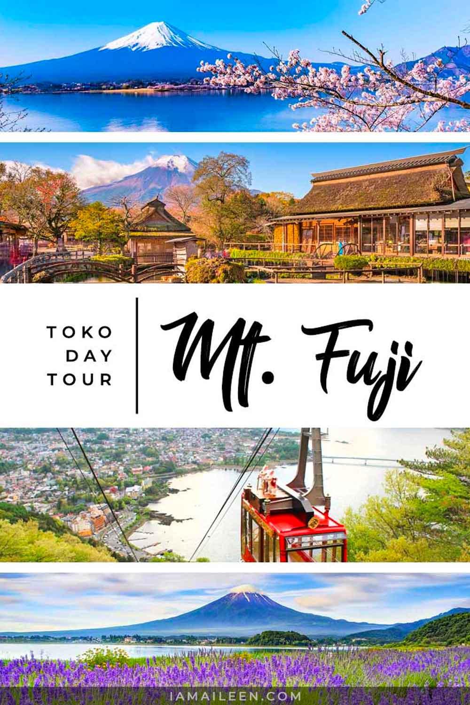 从日本东京出发的富士山旅游(旅游指南&日程安排)