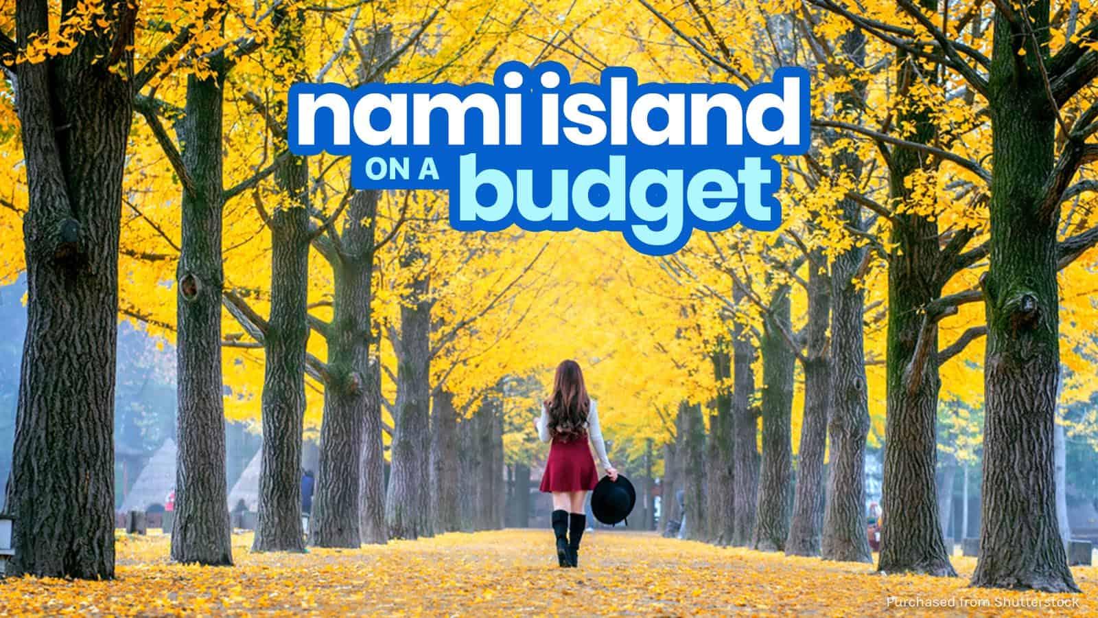 像我们大多数人一样,当娜美岛被用作《冬季奏鸣曲》的背景时,我才了解到它。