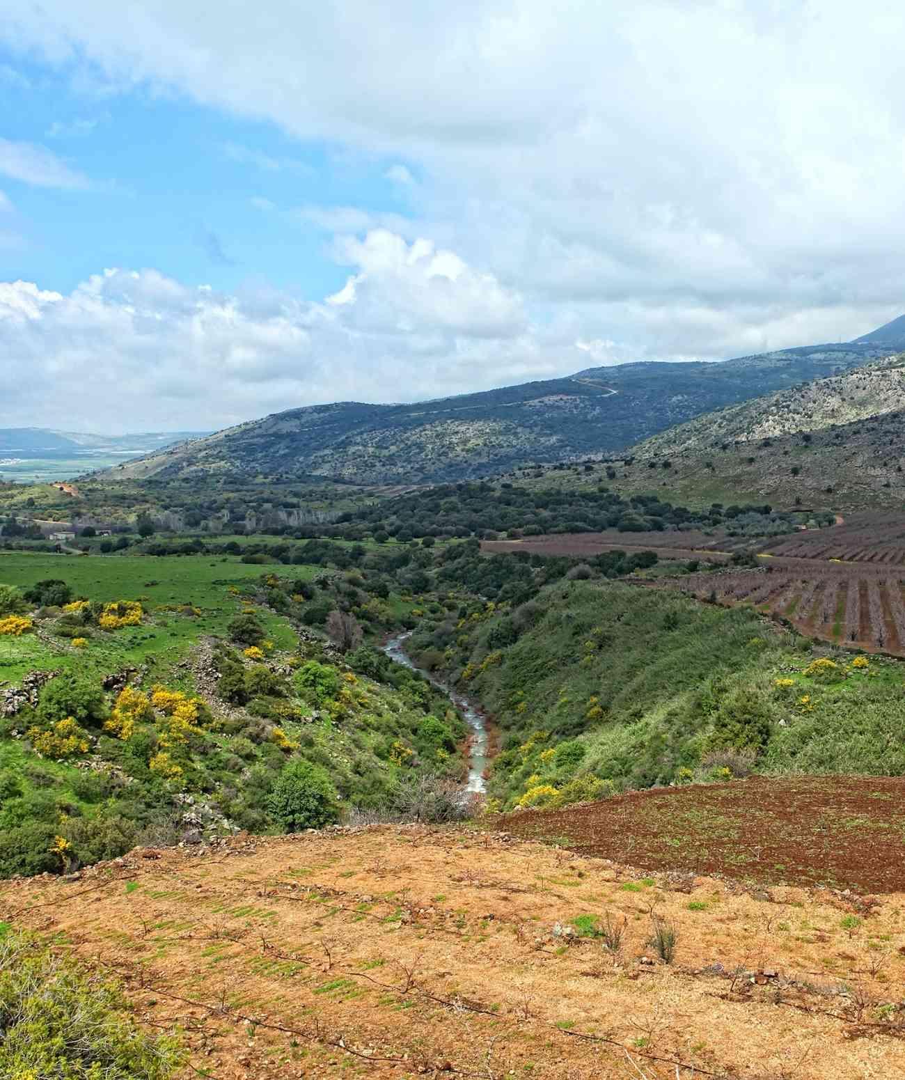 戈兰高地:让我们抛开争议,看看以色列葡萄酒之乡的真正美景