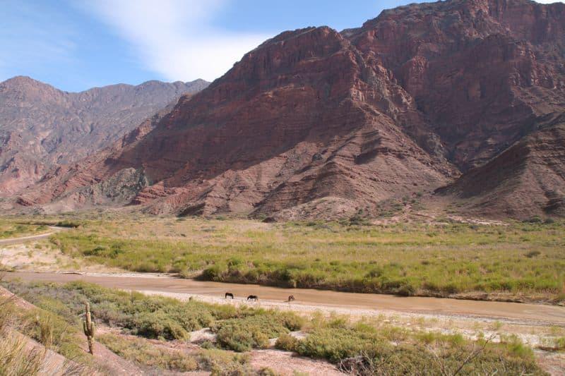 公路旅行–阿根廷西北部第一部分