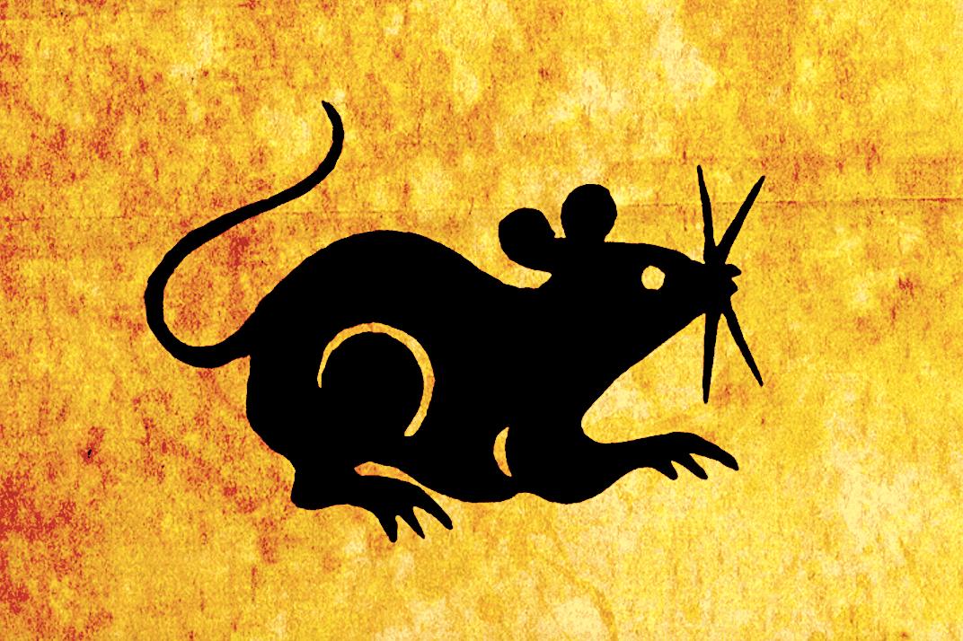 我的汤里有只老鼠:寻找城里最美味的啮齿动物–罗夫-波茨