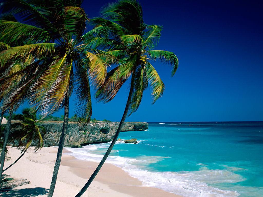 巴巴多斯的5个最佳海滩 | 一步之遥