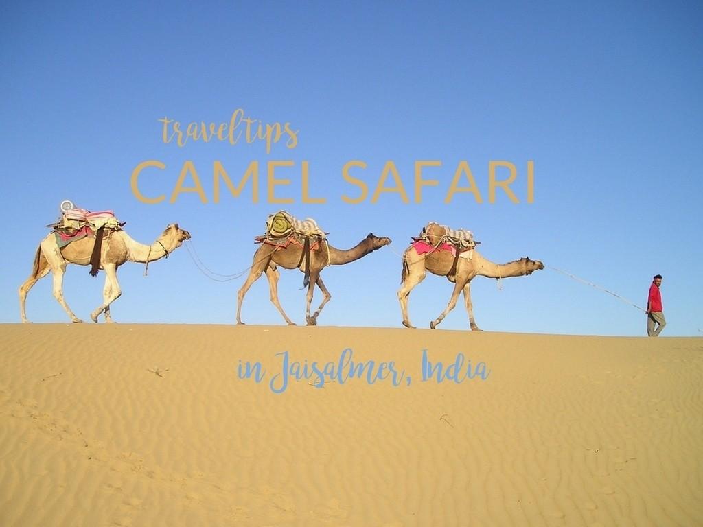 贾伊萨尔梅尔的骆驼旅行:终极清单 – 穿高跟鞋的嬉皮士