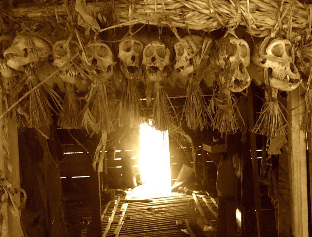 门塔瓦人的房子上装饰着头骨的花环(作为一种尊重的姿态)–罗尔夫-波茨
