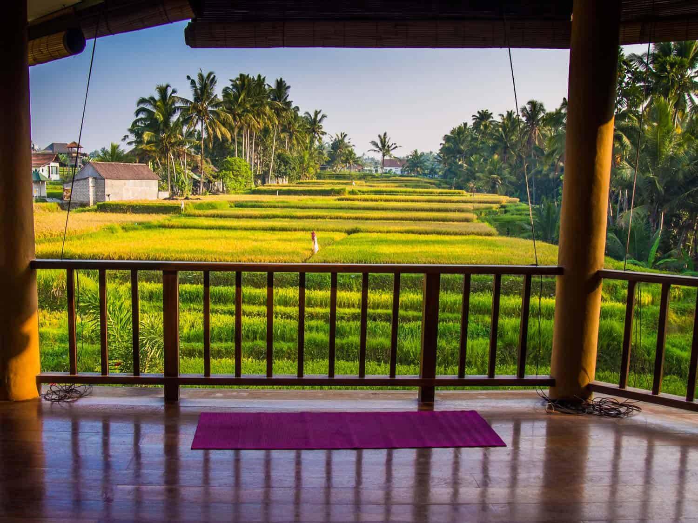 巴厘岛乌布的瑜伽终极指南